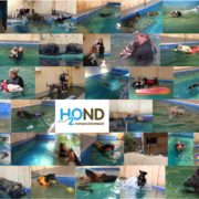 1000ste zwemles - H2Ond